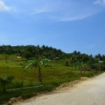Cebu_Hills_16